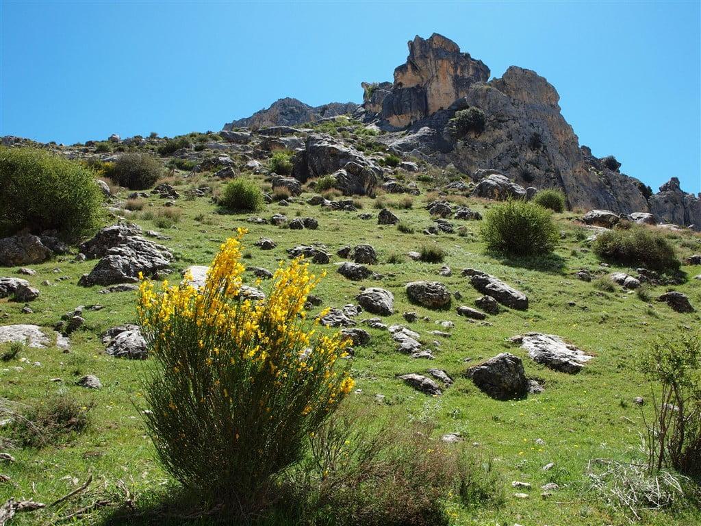 Parque natural de la Sierra de Castril (04/05/2019).
